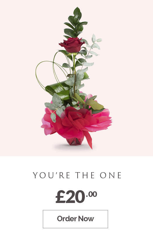 Order You're the One red rose £20