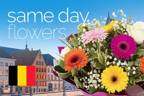 Sameday flowers delivered in Belgium