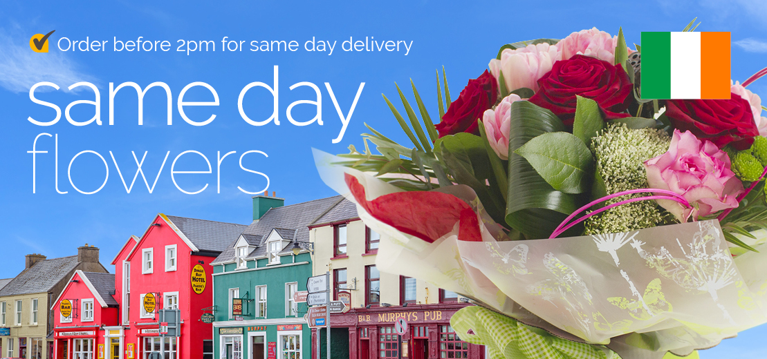 Sameday flowers delivered in Ireland