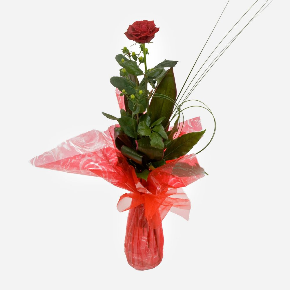 Order A Single Red Rose