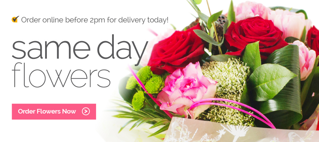 Send same day flowers to family and friends