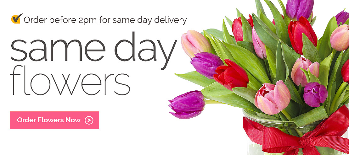 Send Same Day Flowers to Cyprus