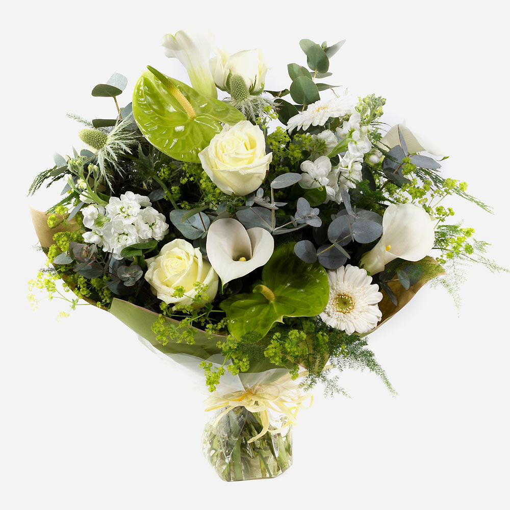 Order Sparkling Champagne