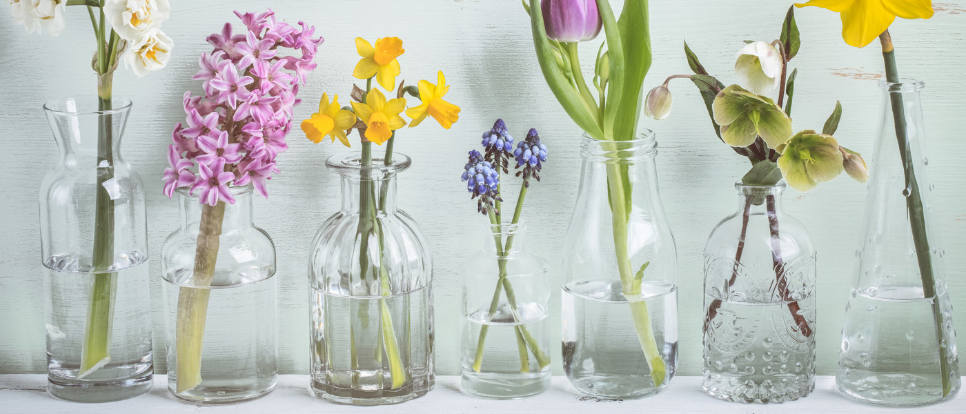 Choosing the right vase